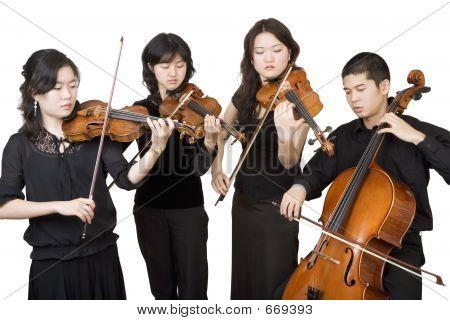 Cuarteto 3