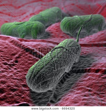 A CG render of the salmonella virus