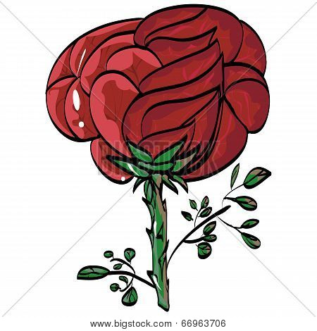 Greetings Festive Beauty Mark Rose Vektor