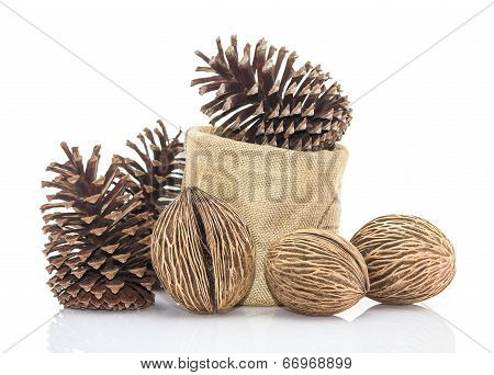 Othalanga - Suicide  Seed And Cedar Pine Cone In Sacks Fodder