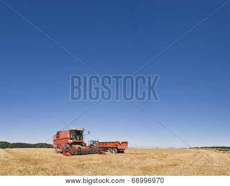 Combine Harvester And Farmland