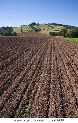 Ploughed Farm Field And Landscape