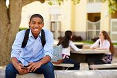 stock photo of playground school  - Male High School Student Using Phone On School Campus - JPG