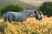 image of horse girl  - Beautiful girl and horse outdoors - JPG