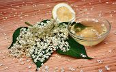 image of elderberry  - Health syrup from elderberry flowers on a wooden table - JPG