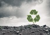 picture of reuse recycle  - Conceptual image with recycle green sign growing on ruins - JPG