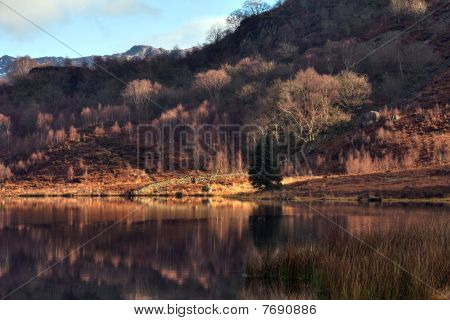 Llyn Dinas Reflections