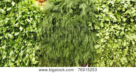 greenery on market as background
