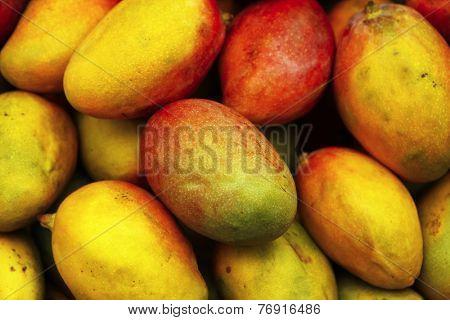 fresh raw sweet mango heap as background on market