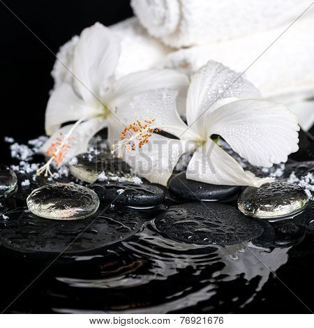 Beautiful Spa Concept Of Delicate White Hibiscus, Zen Stones With Drops, Snow, Ice And Towels On Rip