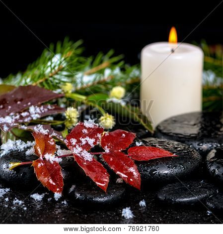 Winter Spa Concept Of Evergreen Branches, Red Leaves With Drops, Snow,  Candle On Zen Basalt Stones,
