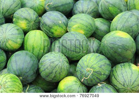 big fresh  sweet green water melons