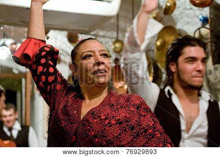 Flamenco Performance At Sacromonte Cave