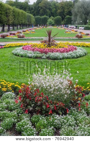 Beautiful Flower Bed In Park
