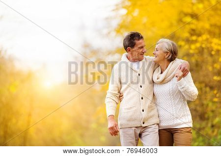 Active seniors walk in nature