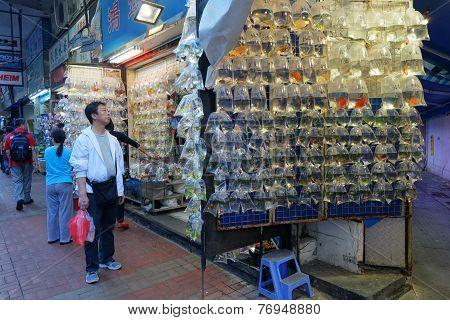 Hong Kong Gold Fish Market In Tung Choi Street