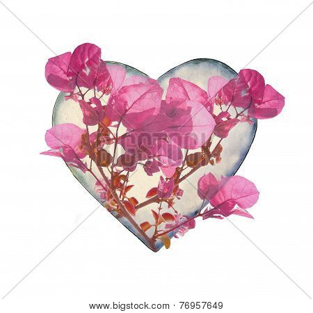 Heart Shaped With Flowers