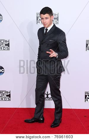 LOS ANGELES - NOV 23:  Nick Jonas at the 2014 American Music Awards - Arrivals at the Nokia Theater on November 23, 2014 in Los Angeles, CA