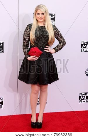 LOS ANGELES - NOV 23:  Meghan Trainor at the 2014 American Music Awards - Arrivals at the Nokia Theater on November 23, 2014 in Los Angeles, CA