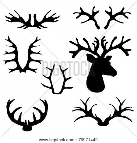 Deer horns set. Vector illustration.