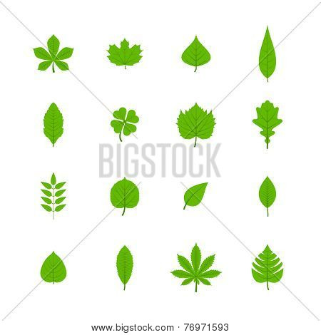 Green leaves flat icons set