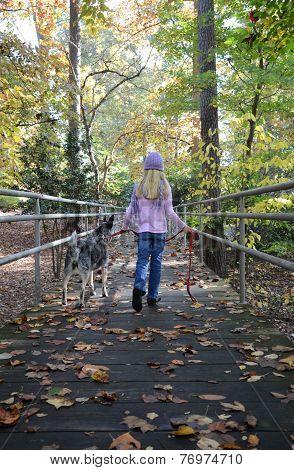 Fall Walking