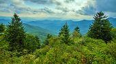 stock photo of blue ridge mountains  - The Blue Ridge Mountains horizon as seen from the Blue Ridge Parkway in North Carolina - JPG
