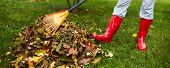 image of woman boots  - Woman in red boots raking Fall leaves in backyard