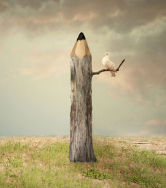 image of fairy tail  - Surreal illustration imagine representing a pencil like a tree with a dove under a branch with a beautiful sky and grass - JPG