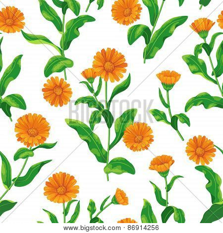 Calendula Bunches Pattern