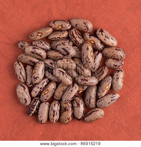 Circle Of Pinto Beans