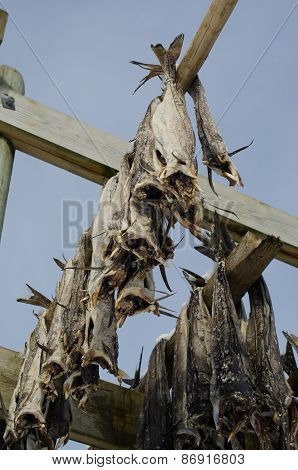 A flake for drying fish