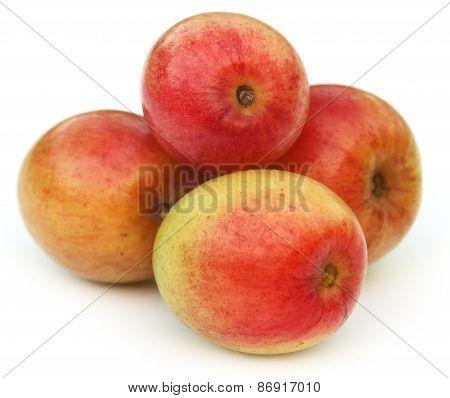 Ripe Juicy Jujube Fruits