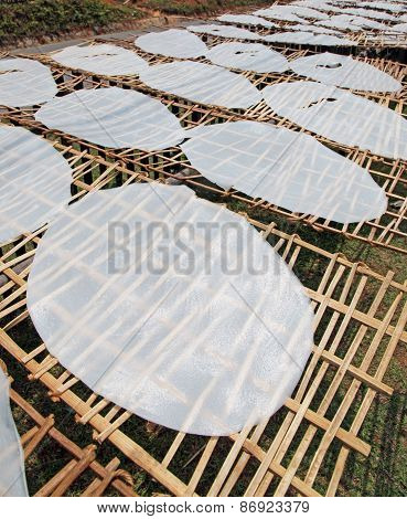 Rice Paper Manufacturing