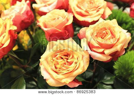 Red with yellow roses