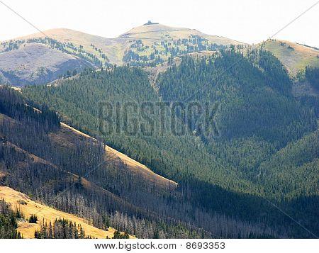 Mountains of Yellowstone