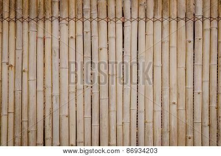 Old Bamboo Wall Background