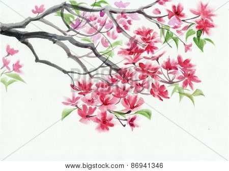 Blossoming Tree Watercolor Painting