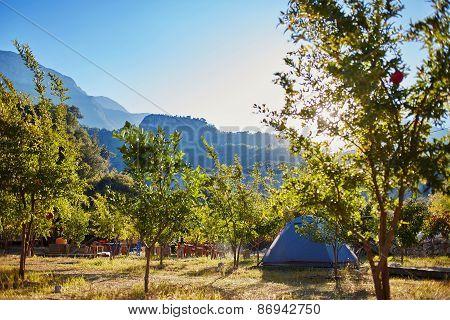 tent in the garden