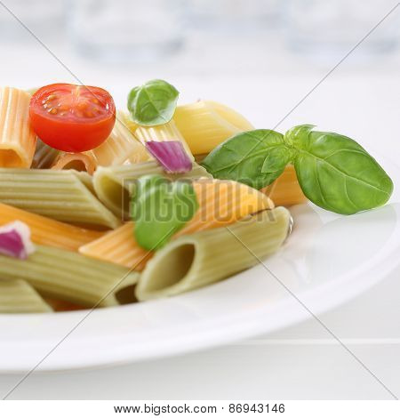 Italian Cuisine Colorful Penne Rigate Noodles Pasta Meal With Tomatoes