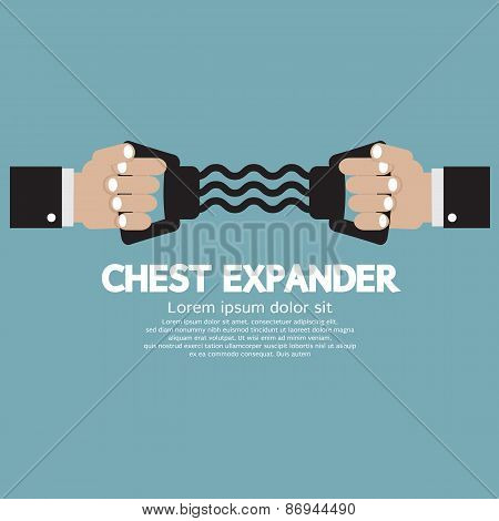 Chest Expander Fitness Equipment.