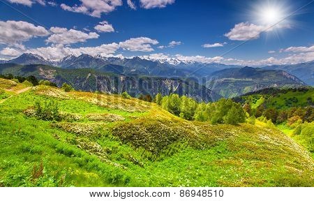 Panorama Of The Blossom Alpine Meadows In The Caucasus Mountains
