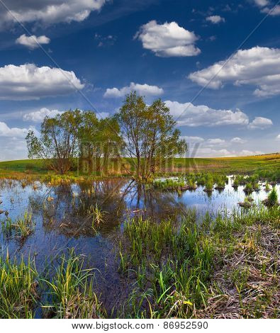 Beautiful Summer Landscape On The Backwater