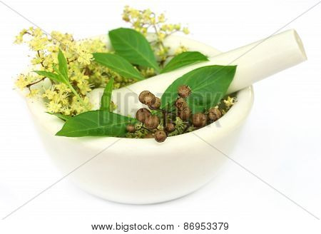 Henna Leaves With Flower And Seeds