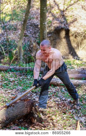 Woodcutter Cut A Trunk With An Ax In Forest