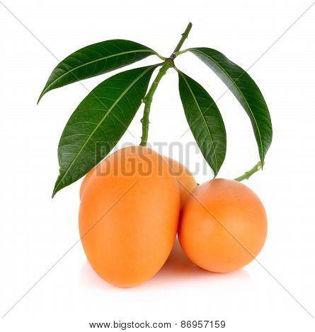 Marian Plum Thai Fruit Isolated On White Background