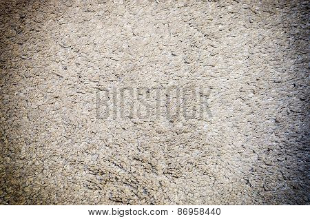 White Grey Carpet Texture For Background With Vignette