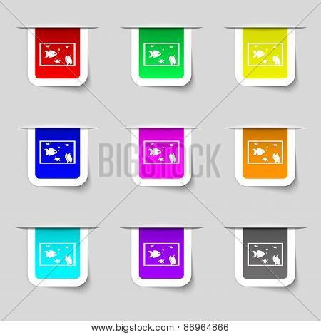 Aquarium, Fish In Water Icon Sign. Set Of Multicolored Modern Labels For Your Design. Vector