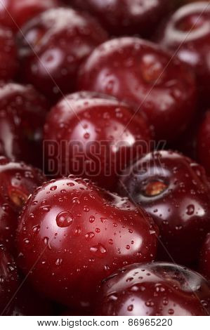 ripe washed cherries close up, organic food