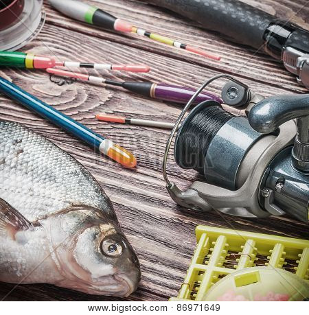 Fishing Tackle And Fished Bream